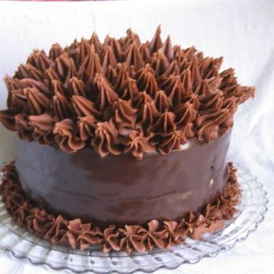 de cake van de extreme chocolade minnaar van elizabeth