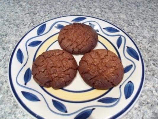 eenvoudige chocoladekoekjes
