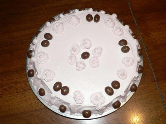 de makkelijke 1-2-3-4 chocolade minicakes