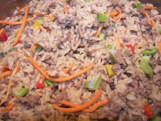 gemakkelijke rijst en hamburger een gerecht diner